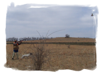 Cokeley Farms Sporting Clays